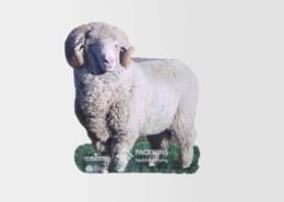 Creative-Sheep-POS-Purchase-Custom-Life-Size-Cutouts-Standees